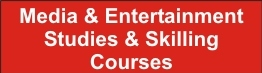Media & Entertainment Studies & Skilling Courses